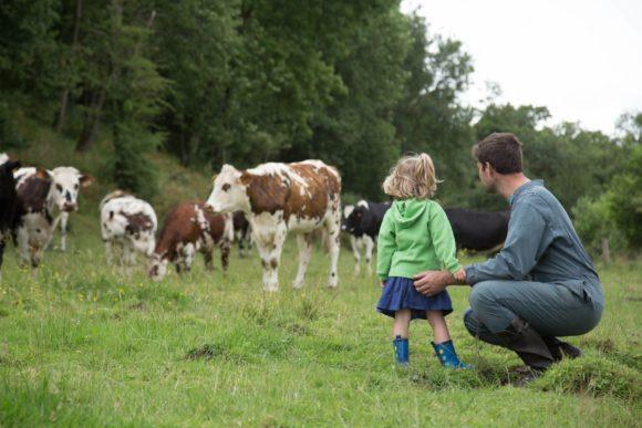 Biodiversite-eleveur-vaches-laitieres-preservation-du-vivant-grand-fermage