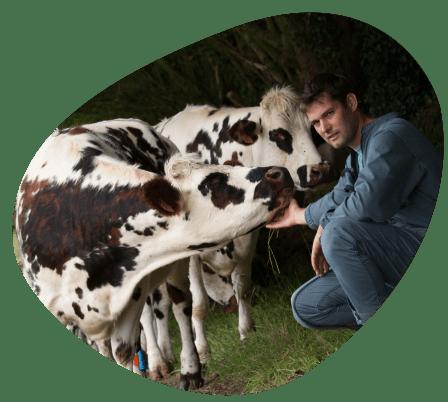 Bulle-territoire-normandie-chiffres-clés-grand-fermage