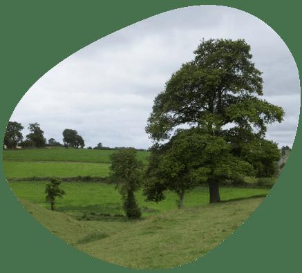 Bulle-territoire-normandie-temperature-grand-fermage