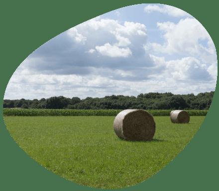 Bulle-territoire-pays-de-la-loire-temperature-climat-grand-fermage