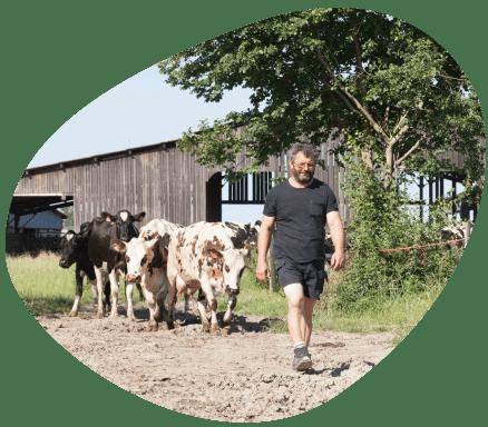 Territoire-centre-val-de-loire-vaches-laitieres-eleveurs-grand-fermage