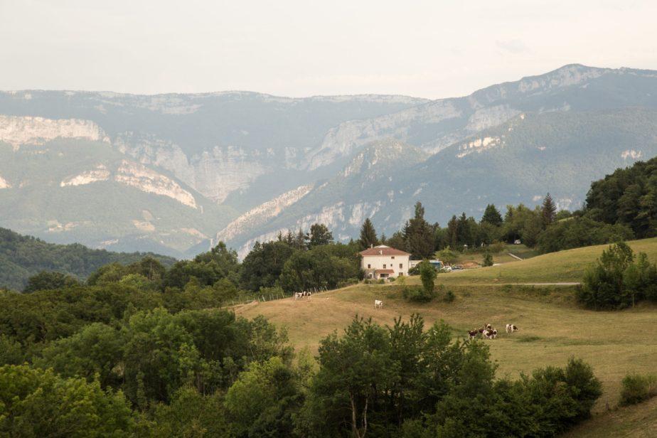 Territoire-rhone-alpes-vaches-laitieres-region-sur-les-toits-de-l-europe-grand-fermage
